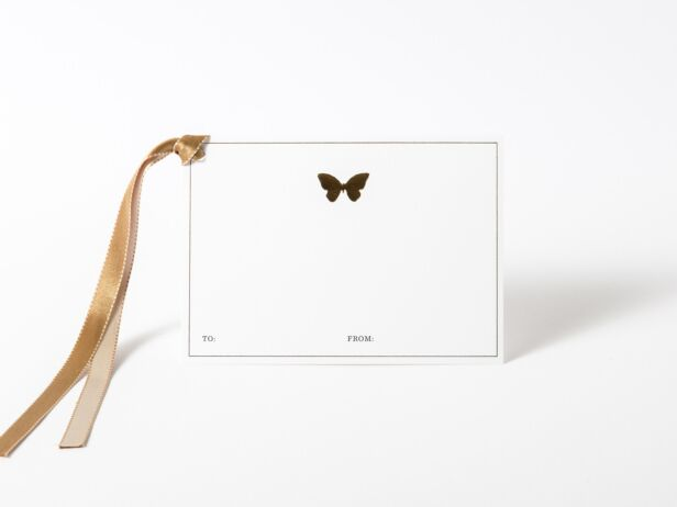 Butterfly with ribbon